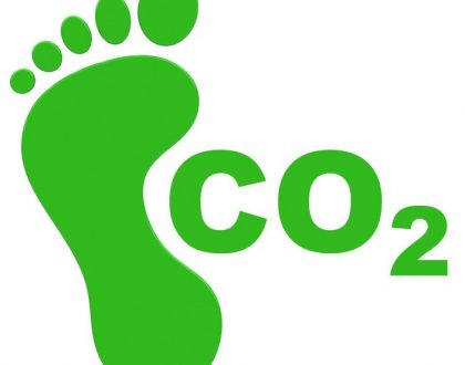 Can you be carbon neutral when your business runs a fleet?
